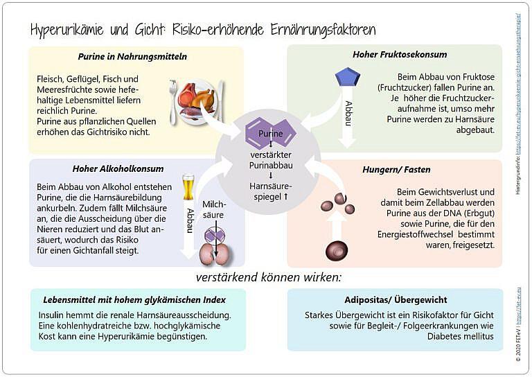 Blogazine Hyperurikämie und Gicht - Ernährungstherapie