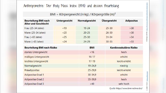 Anthropometrie: Der Body Mass Index (BMI) und dessen Beurteilung