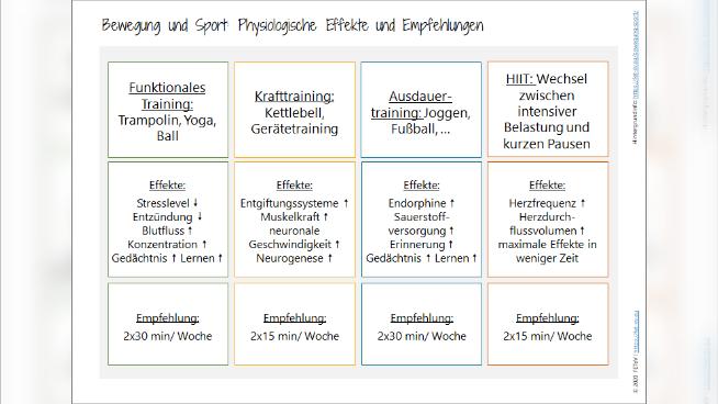 Bewegung und Sport: Physiologische Effekte und Empfehlungen