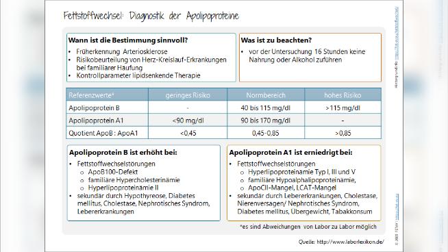Fettstoffwechsel: Diagnostik der Apolipoproteine