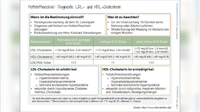 Fettstoffwechsel: Diagnostik LDL- und HDL-Cholesterin