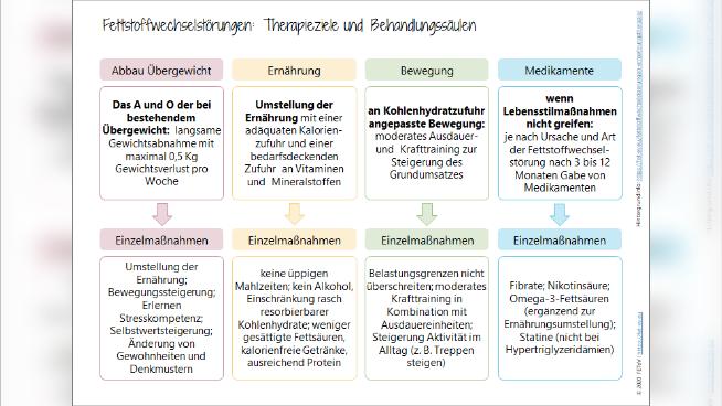 Fettstoffwechselstörungen: Therapieziele und Behandlungssäulen