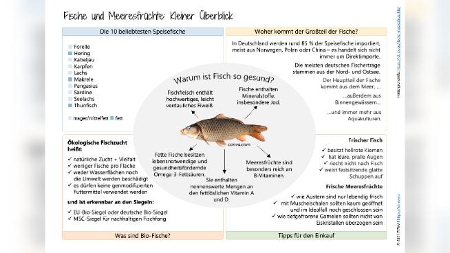 Fische und Meeresfrüchte - Kleiner Überblick