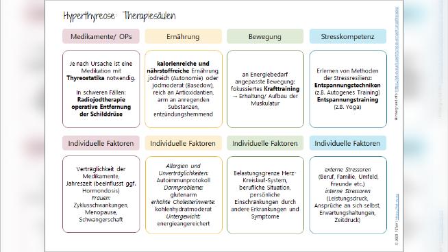 Hyperthyreose - Therapiesäulen