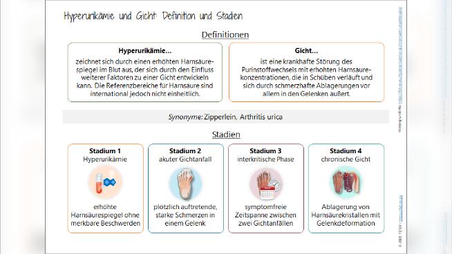 Hyperurikämie und Gicht - Krankheitsbild und Ernährungstherapie