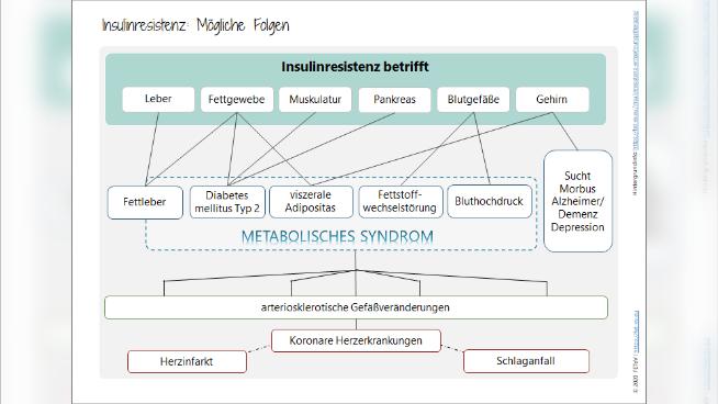 Insulinresistenz und metabolisches Syndrom - Krankheitsbild und Ernährungstherapie