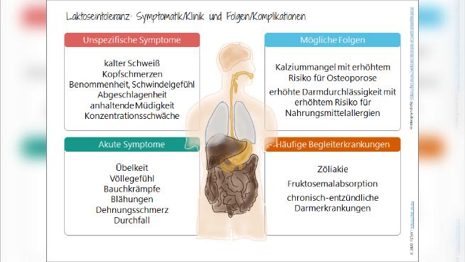 Laktoseintoleranz - Krankheitsbild und Ernährungstherapie