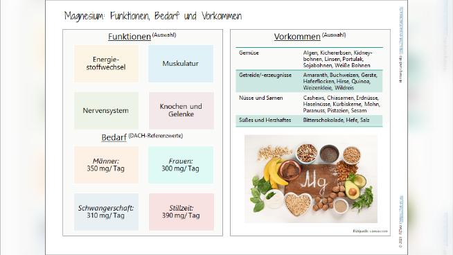 Magnesium: Funktionen, Bedarf und Vorkommen