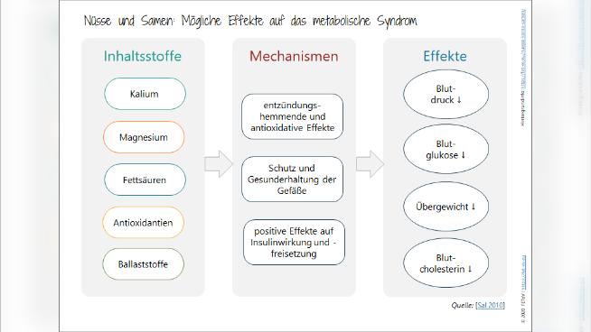 Nüsse und Samen: Mögliche Effekte auf das metabolische Syndrom