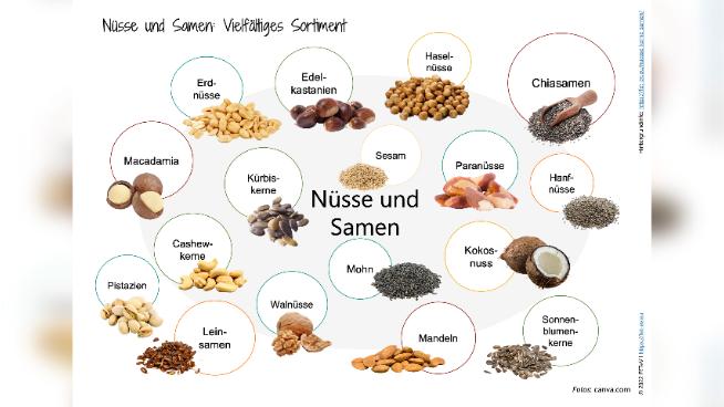Nüsse und Samen: Vielseitiges Sortiment
