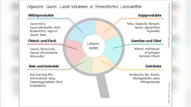 Organische Säuren: Laktat-Vorkommen in (fermentierten) Lebensmitteln