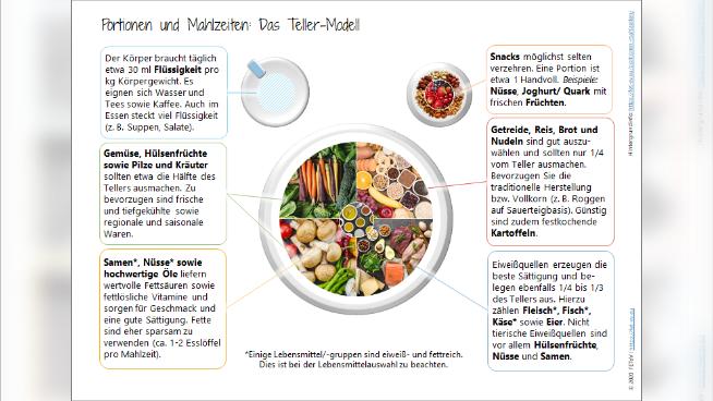 Portionen und Mahlzeiten: Teller-Modell