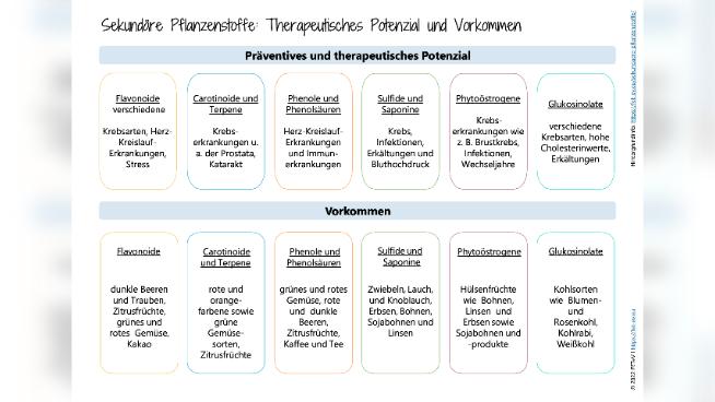 Sekundäre Pflanzenstoffe: Therapeutisches Potenzial und Vorkommen