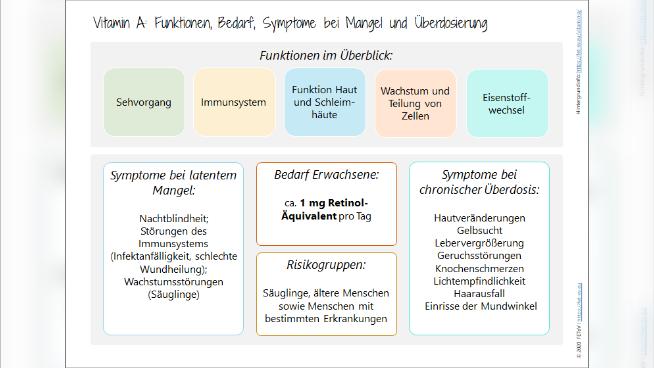 Vitamin A - Funktionen, Bedarf, Symptome bei Mangel und Überdosierung