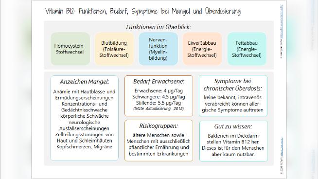 Vitamin B12 - Funktionen, Bedarf, Symptome bei Mangel und Überversorgung