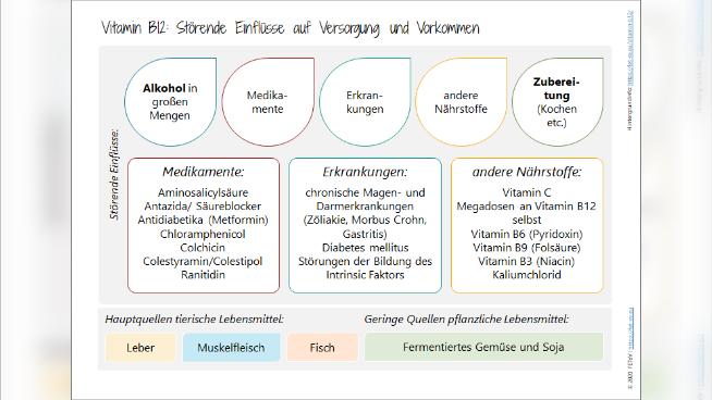 Vitamin B12 - Störende Einflüsse auf Versorgung und Vorkommen