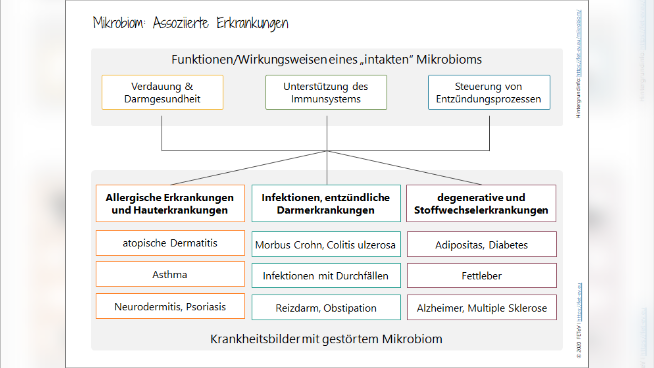 Mikrobiom: Assoziierte Erkrankungen